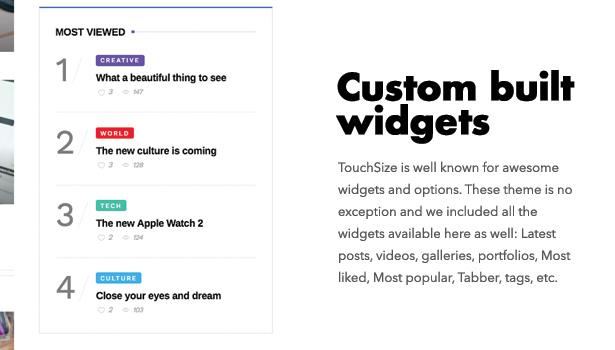 Diginex has custom widgets