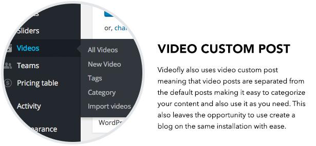 Video Custom Post