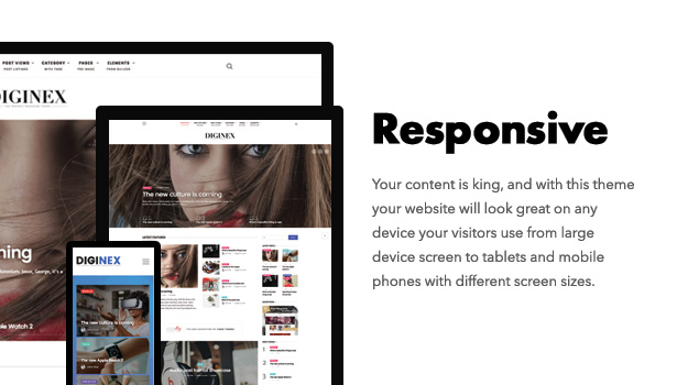 Diginex is responsive